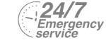 24/7 Emergency Service Pest Control in Regent's Park, NW1. Call Now! 020 8166 9746