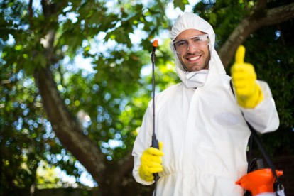 Pest Control in Regent's Park, NW1. Call Now 020 8166 9746